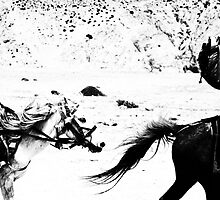 'Windhorse' by John  van Dijen