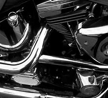 Chrome Baby Chrome by TeAnne