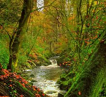 Erme Gorge by phil hemsley