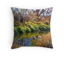 Irrigation Ditch Throw Pillow