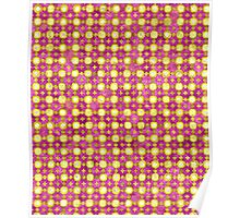 Indian Mirror Fabric Poster