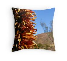 The Beautiful Southwest Throw Pillow