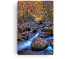 South Mountains State Park, North Carolina Canvas Print