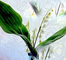 Multiplying Lily's by trueblvr