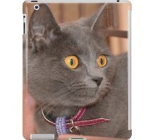 ELSY ON THE STAIRS iPad Case/Skin