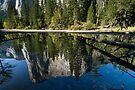 El Capitan, Reflections. by Michael Treloar