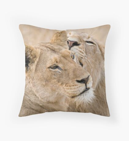 Lionesses Telling Secrets Throw Pillow