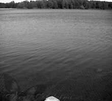 Big Water - Bixler Lake, Indiana by NoctisAeterna