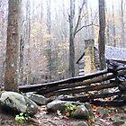 Cabin In The Mist by raindancerwoman