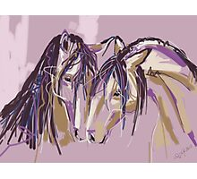 Horses Purple pair Photographic Print
