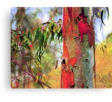 Eucalyptus Altered Canvas Print