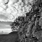 Yorkshire Dales by Nadean Brennan