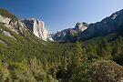 Yosemite Day by Michael Treloar