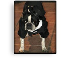 Boston Tuxedo! Canvas Print