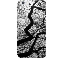 Find your Pathway iPhone Case/Skin