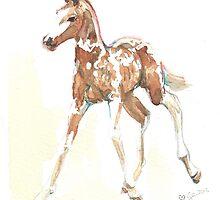 foal Pinto by Go van Kampen