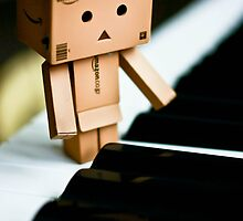 Danbo - Little pianist by jdreamer
