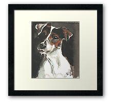 dog Freddy Framed Print