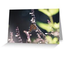 monarch moment Greeting Card