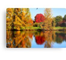 Fall Colors in Eugene Metal Print