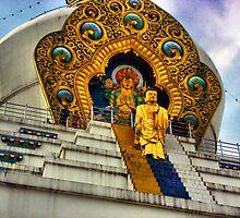 Buddha by Amit  Gairola