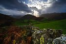 Martindale - Cumbria by David Lewins