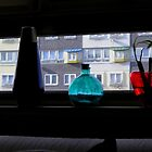 Bottles and Vases in Window by peterrobinsonjr