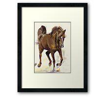 Horse Hazel Framed Print