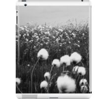 Cotton grass in the Wind iPad Case/Skin