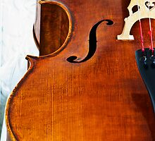 Cello by Renee Hubbard Fine Art Photography