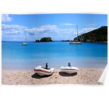 Stingray cove - Bay of Islands Poster