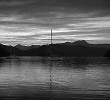 A calm early morning in Picton , New Zealand by jenuine