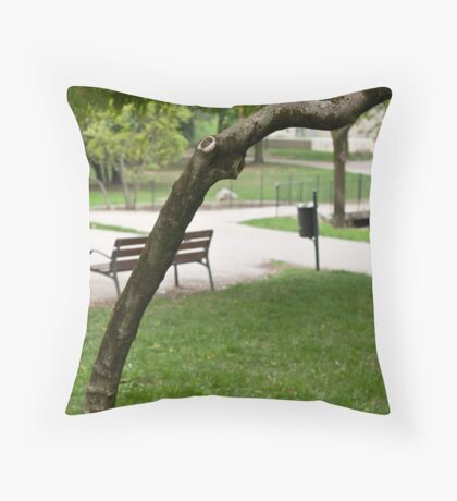 In The Park take 2 Throw Pillow