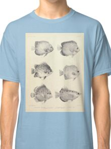 The fishes of India by Francis Day 027 - Holacanthus Annularis, H Xanthurus, Scatophagus Argus, Ephippus Orbis, Drepane Punctata, Toxotes Chatareus Classic T-Shirt