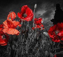 Royal Marine Remembrance by Stephen Smith