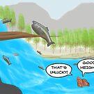 The Salmon Cartoon by David Stuart