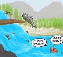 The Salmon Cartoon by David Stuart