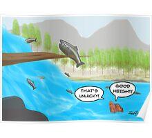 The Salmon Cartoon Poster