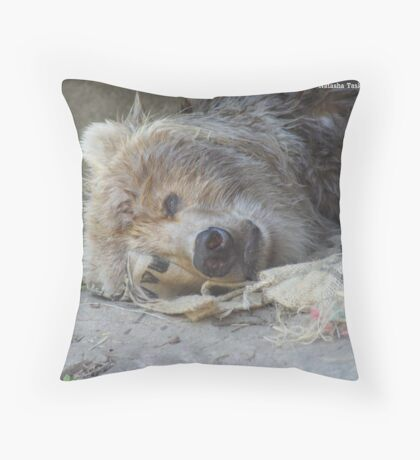 Kodiak Bear @ Taraonga Zoo Sydney Throw Pillow