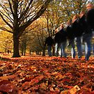Setting off for an autumn walk ... by Martin Griffett