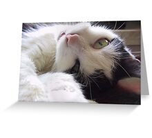 Cuddling Mousy Greeting Card