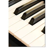 Piano Keys by NKSharp
