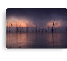The Fog Bank Canvas Print