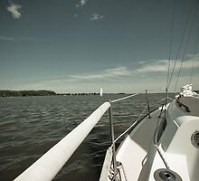 Chesapeake Sail by michekerr