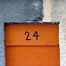 No. 24 by villrot