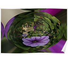 PURPLE FLOWER IN A BALL Poster