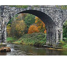 Autumn leaves through Navan bridge Photographic Print