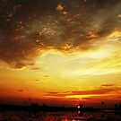 sunset at the paddy fields by tizzaholic