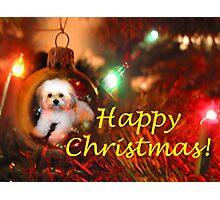 A Christmas Wish! Photographic Print