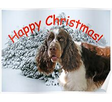 Happy Springer Christmas! Poster